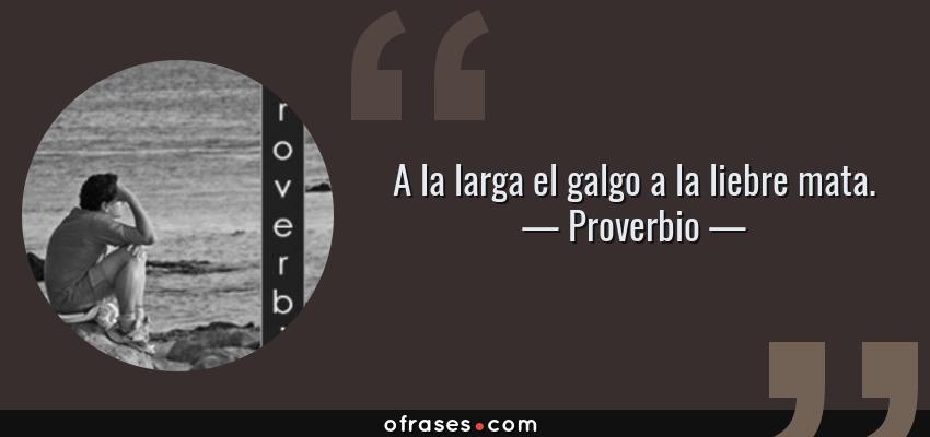 Frases de Proverbio - A la larga el galgo a la liebre mata.