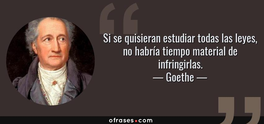 Frases de Goethe - Si se quisieran estudiar todas las leyes, no habría tiempo material de infringirlas.