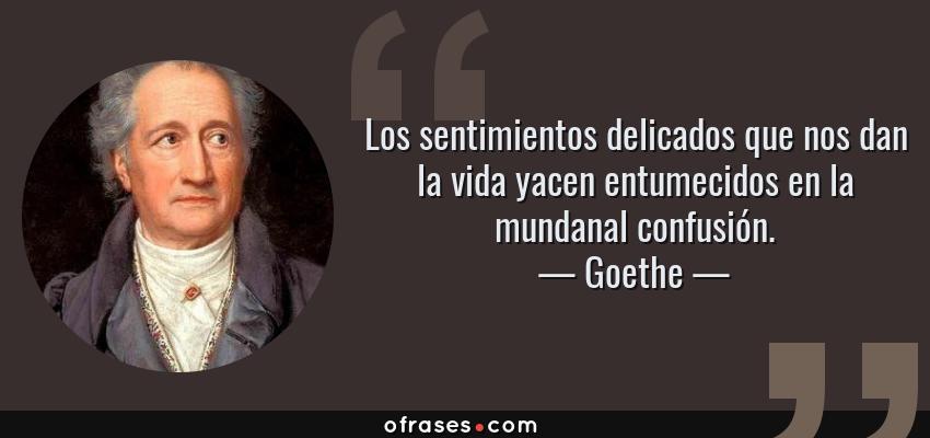 Frases de Goethe - Los sentimientos delicados que nos dan la vida yacen entumecidos en la mundanal confusión.