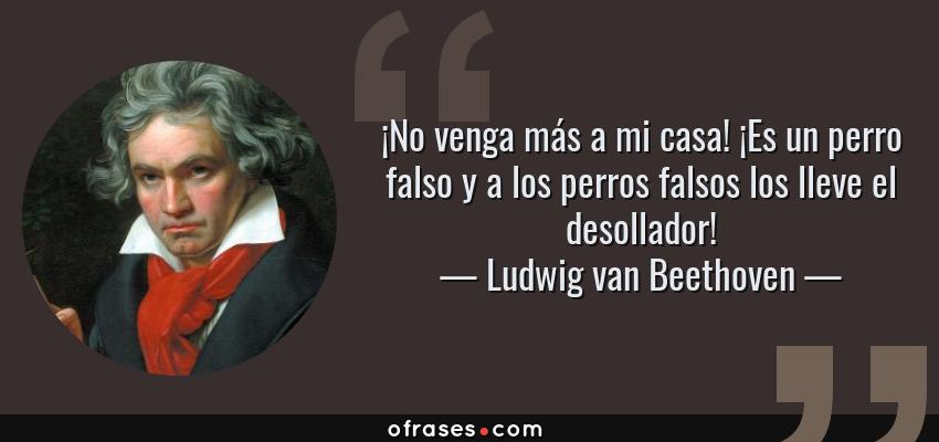 Frases de Ludwig van Beethoven - ¡No venga más a mi casa! ¡Es un perro falso y a los perros falsos los lleve el desollador!