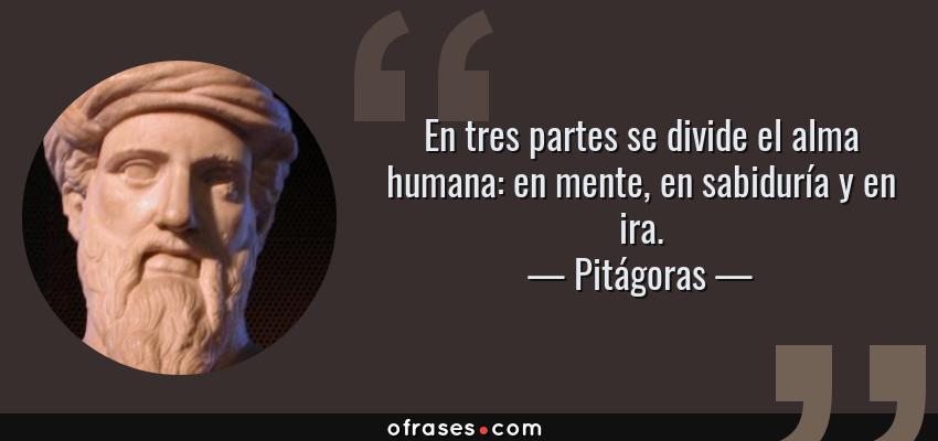 Frases de Pitágoras - En tres partes se divide el alma humana: en mente, en sabiduría y en ira.