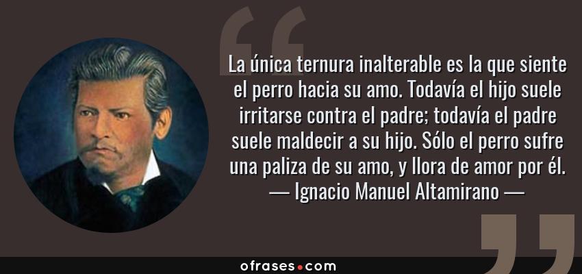 Frases de Ignacio Manuel Altamirano - La única ternura inalterable es la que siente el perro hacia su amo. Todavía el hijo suele irritarse contra el padre; todavía el padre suele maldecir a su hijo. Sólo el perro sufre una paliza de su amo, y llora de amor por él.