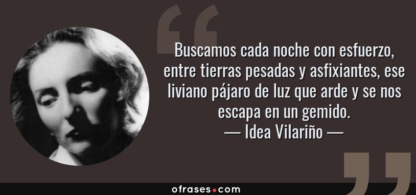 Frases de Idea Vilariño - Buscamos cada noche con esfuerzo, entre tierras pesadas y asfixiantes, ese liviano pájaro de luz que arde y se nos escapa en un gemido.