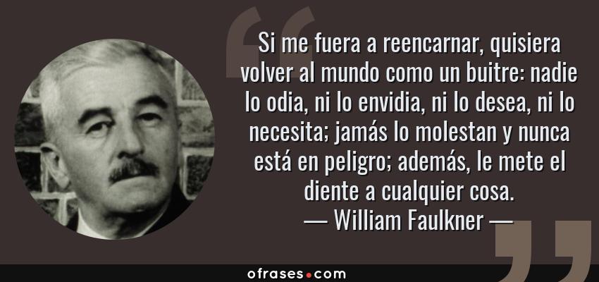 Frases de William Faulkner - Si me fuera a reencarnar, quisiera volver al mundo como un buitre: nadie lo odia, ni lo envidia, ni lo desea, ni lo necesita; jamás lo molestan y nunca está en peligro; además, le mete el diente a cualquier cosa.