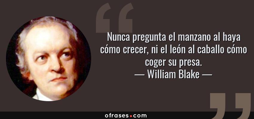 Frases de William Blake - Nunca pregunta el manzano al haya cómo crecer, ni el león al caballo cómo coger su presa.