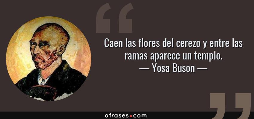 Frases de Yosa Buson - Caen las flores del cerezo y entre las ramas aparece un templo.
