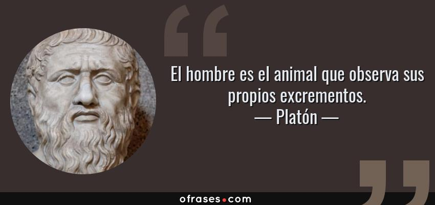Frases de Platón - El hombre es el animal que observa sus propios excrementos.