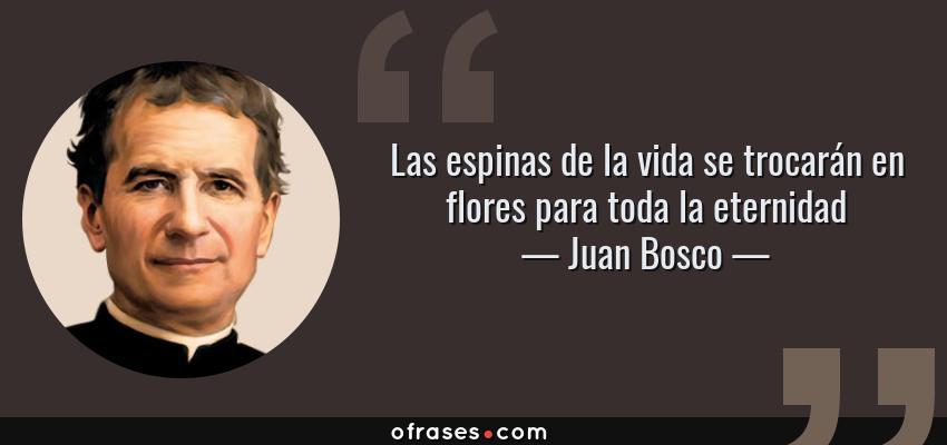 Frases de Juan Bosco - Las espinas de la vida se trocarán en flores para toda la eternidad