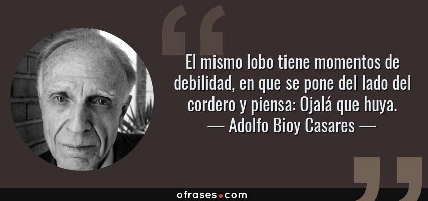 Frases de Adolfo Bioy Casares - El mismo lobo tiene momentos de debilidad, en que se pone del lado del cordero y piensa: Ojalá que huya.