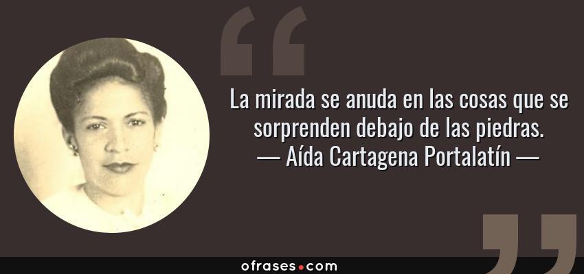 Frases de Aída Cartagena Portalatín - La mirada se anuda en las cosas que se sorprenden debajo de las piedras.