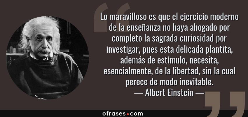 Frases de Albert Einstein - Lo maravilloso es que el ejercicio moderno de la enseñanza no haya ahogado por completo la sagrada curiosidad por investigar, pues esta delicada plantita, además de estímulo, necesita, esencialmente, de la libertad, sin la cual perece de modo inevitable.