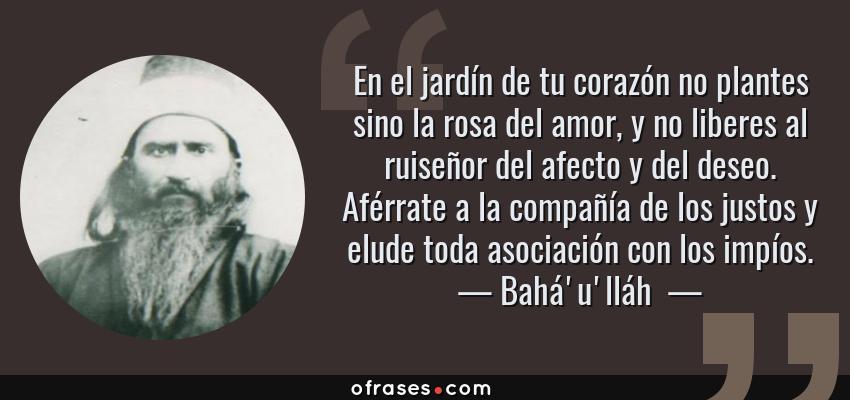 Frases de Bahá'u'lláh  - En el jardín de tu corazón no plantes sino la rosa del amor, y no liberes al ruiseñor del afecto y del deseo. Aférrate a la compañía de los justos y elude toda asociación con los impíos.