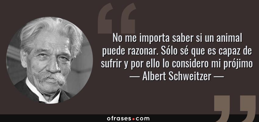 Frases de Albert Schweitzer - No me importa saber si un animal puede razonar. Sólo sé que es capaz de sufrir y por ello lo considero mi prójimo