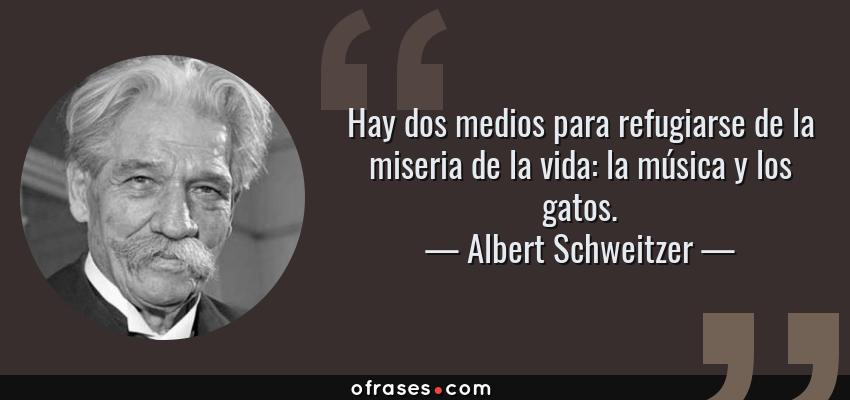 Frases de Albert Schweitzer - Hay dos medios para refugiarse de la miseria de la vida: la música y los gatos.