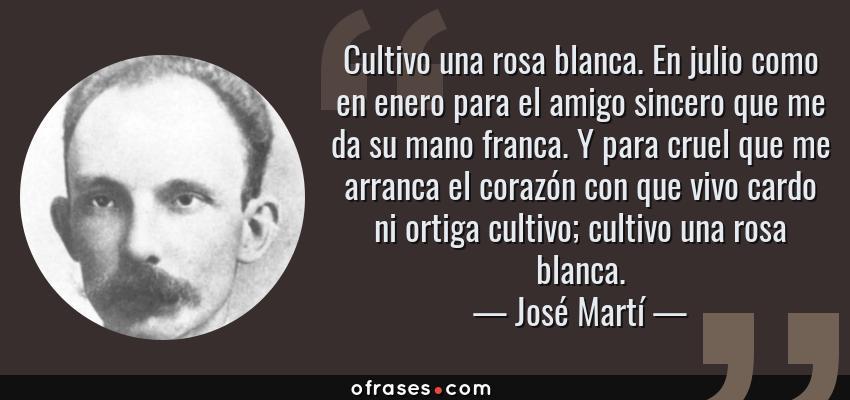 Frases de José Martí - Cultivo una rosa blanca. En julio como en enero para el amigo sincero que me da su mano franca. Y para cruel que me arranca el corazón con que vivo cardo ni ortiga cultivo; cultivo una rosa blanca.
