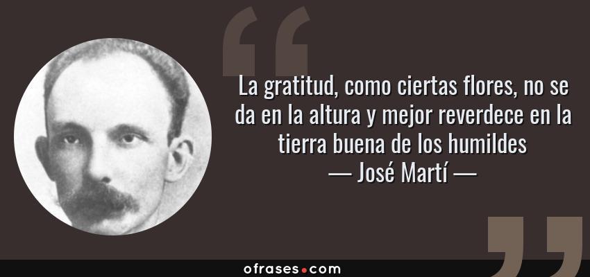 Frases de José Martí - La gratitud, como ciertas flores, no se da en la altura y mejor reverdece en la tierra buena de los humildes