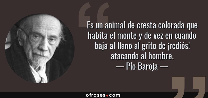 Frases de Pío Baroja - Es un animal de cresta colorada que habita el monte y de vez en cuando baja al llano al grito de ¡rediós! atacando al hombre.