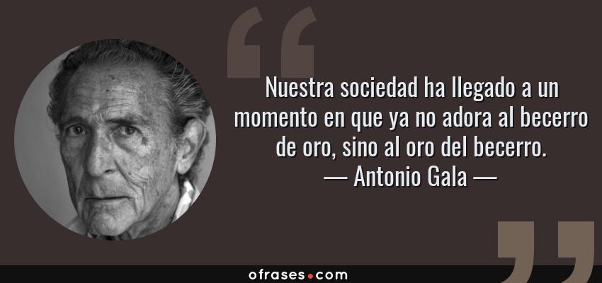 Frases de Antonio Gala - Nuestra sociedad ha llegado a un momento en que ya no adora al becerro de oro, sino al oro del becerro.