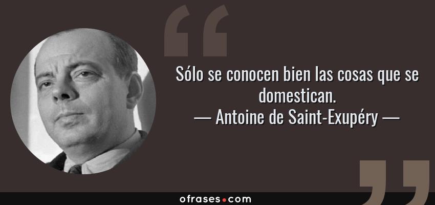 Antoine De Saint Exupéry Sólo Se Conocen Bien Las Cosas Que