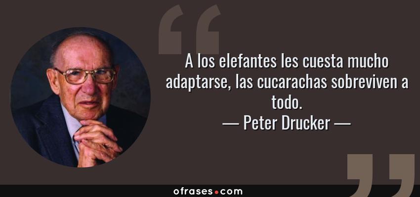 Frases de Peter Drucker - A los elefantes les cuesta mucho adaptarse, las cucarachas sobreviven a todo.