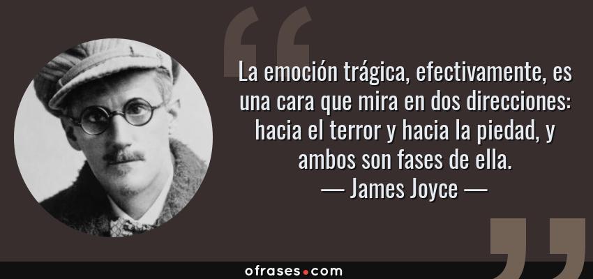 Frases de James Joyce - La emoción trágica, efectivamente, es una cara que mira en dos direcciones: hacia el terror y hacia la piedad, y ambos son fases de ella.