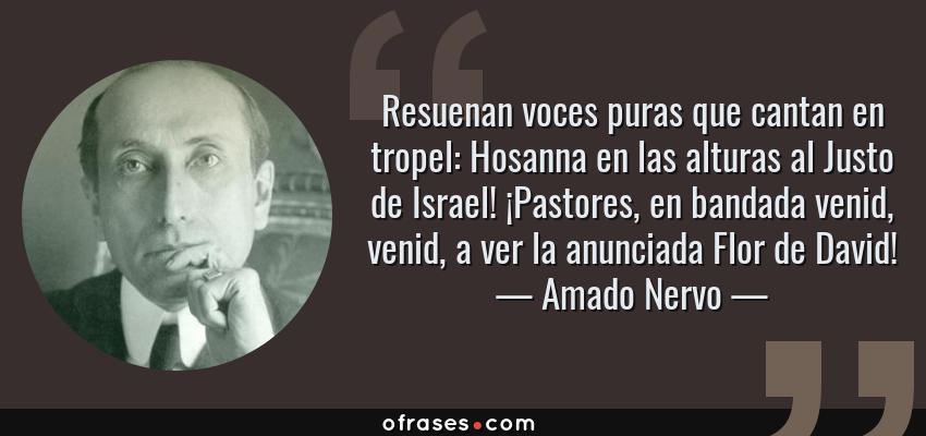 Frases de Amado Nervo - Resuenan voces puras que cantan en tropel: Hosanna en las alturas al Justo de Israel! ¡Pastores, en bandada venid, venid, a ver la anunciada Flor de David!