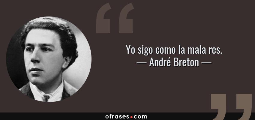 Frases de André Breton - Yo sigo como la mala res.