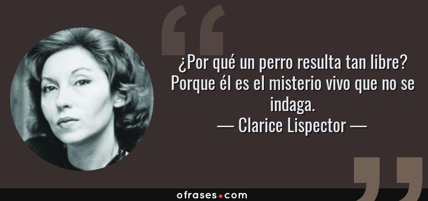 Frases Y Citas Célebres De Clarice Lispector