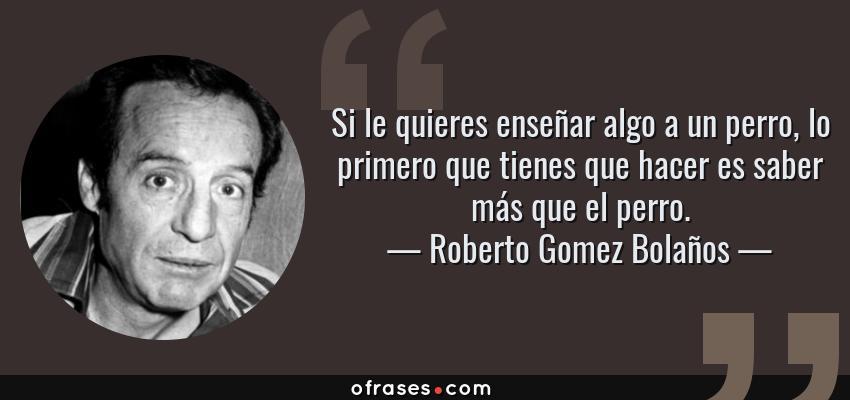 Frases de Roberto Gomez Bolaños - Si le quieres enseñar algo a un perro, lo primero que tienes que hacer es saber más que el perro.