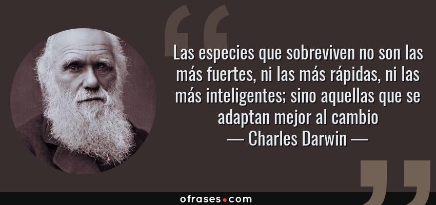 Frases de Charles Darwin - Las especies que sobreviven no son las más fuertes, ni las más rápidas, ni las más inteligentes; sino aquellas que se adaptan mejor al cambio