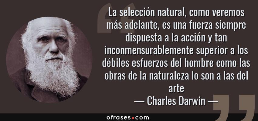 Frases de Charles Darwin - La selección natural, como veremos más adelante, es una fuerza siempre dispuesta a la acción y tan inconmensurablemente superior a los débiles esfuerzos del hombre como las obras de la naturaleza lo son a las del arte