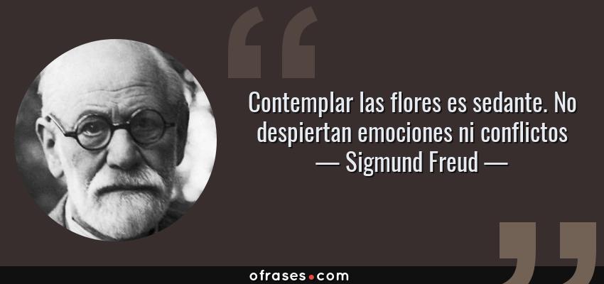 Frases de Sigmund Freud - Contemplar las flores es sedante. No despiertan emociones ni conflictos
