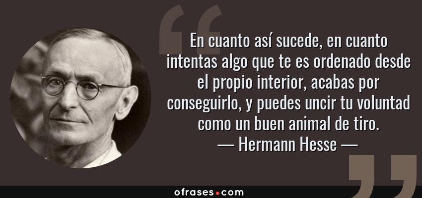 Frases de Hermann Hesse - En cuanto así sucede, en cuanto intentas algo que te es ordenado desde el propio interior, acabas por conseguirlo, y puedes uncir tu voluntad como un buen animal de tiro.