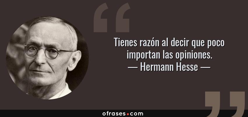 Frases de Hermann Hesse - Tienes razón al decir que poco importan las opiniones.