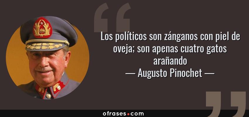 Frases de Augusto Pinochet - Los políticos son zánganos con piel de oveja; son apenas cuatro gatos arañando