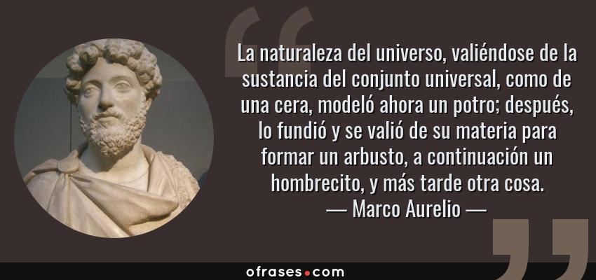 Frases de Marco Aurelio - La naturaleza del universo, valiéndose de la sustancia del conjunto universal, como de una cera, modeló ahora un potro; después, lo fundió y se valió de su materia para formar un arbusto, a continuación un hombrecito, y más tarde otra cosa.