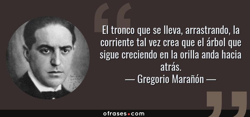 Frases de Gregorio Marañón - El tronco que se lleva, arrastrando, la corriente tal vez crea que el árbol que sigue creciendo en la orilla anda hacia atrás.