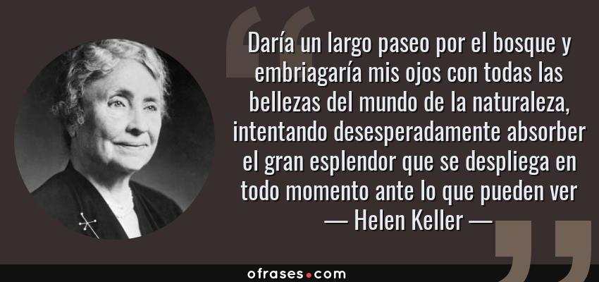 Frases de Helen Keller - Daría un largo paseo por el bosque y embriagaría mis ojos con todas las bellezas del mundo de la naturaleza, intentando desesperadamente absorber el gran esplendor que se despliega en todo momento ante lo que pueden ver