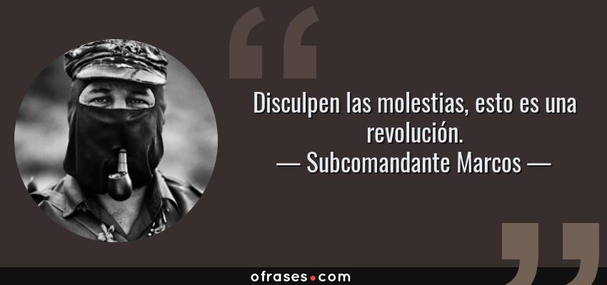 Frases de Subcomandante Marcos - Disculpen las molestias, esto es una revolución.