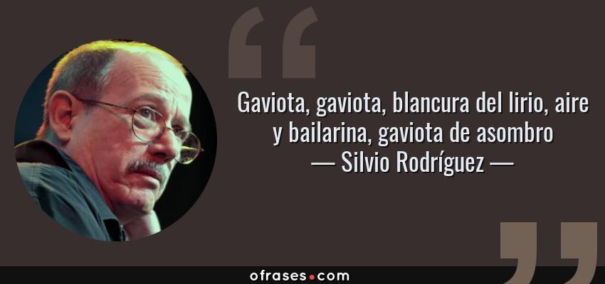 Frases de Silvio Rodríguez - Gaviota, gaviota, blancura del lirio, aire y bailarina, gaviota de asombro