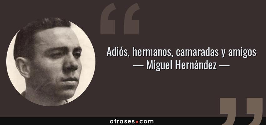 Frases de Miguel Hernández - Adiós, hermanos, camaradas y amigos