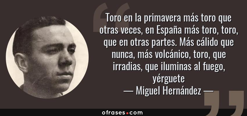Frases de Miguel Hernández - Toro en la primavera más toro que otras veces, en España más toro, toro, que en otras partes. Más cálido que nunca, más volcánico, toro, que irradias, que iluminas al fuego, yérguete