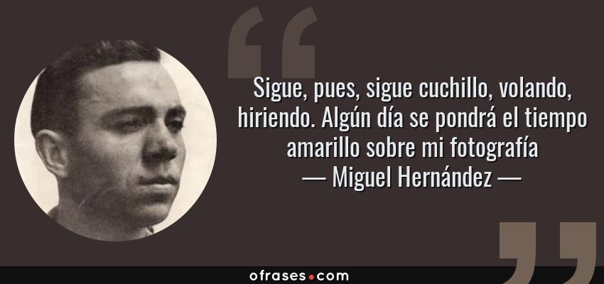 Frases de Miguel Hernández - Sigue, pues, sigue cuchillo, volando, hiriendo. Algún día se pondrá el tiempo amarillo sobre mi fotografía