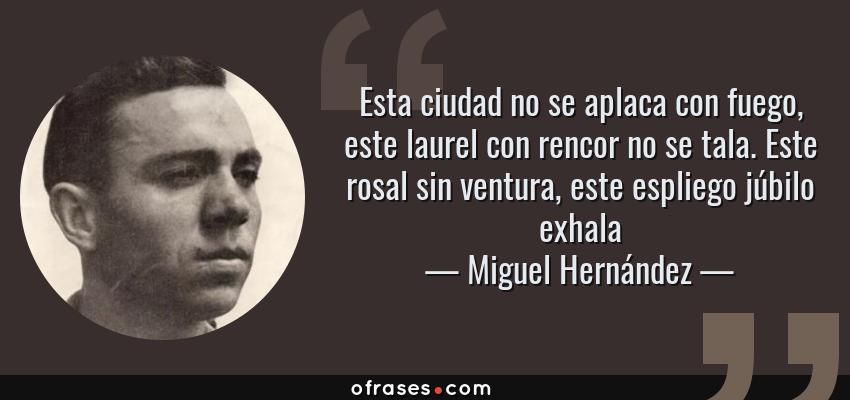 Frases de Miguel Hernández - Esta ciudad no se aplaca con fuego, este laurel con rencor no se tala. Este rosal sin ventura, este espliego júbilo exhala