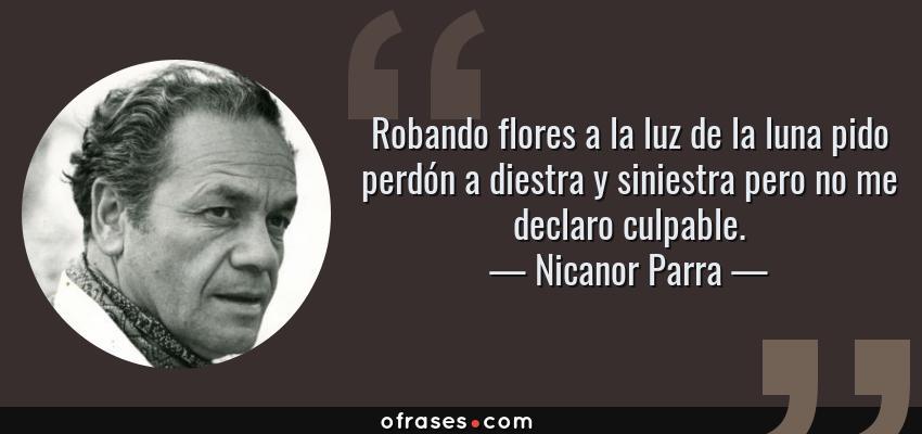 Frases de Nicanor Parra - Robando flores a la luz de la luna pido perdón a diestra y siniestra pero no me declaro culpable.