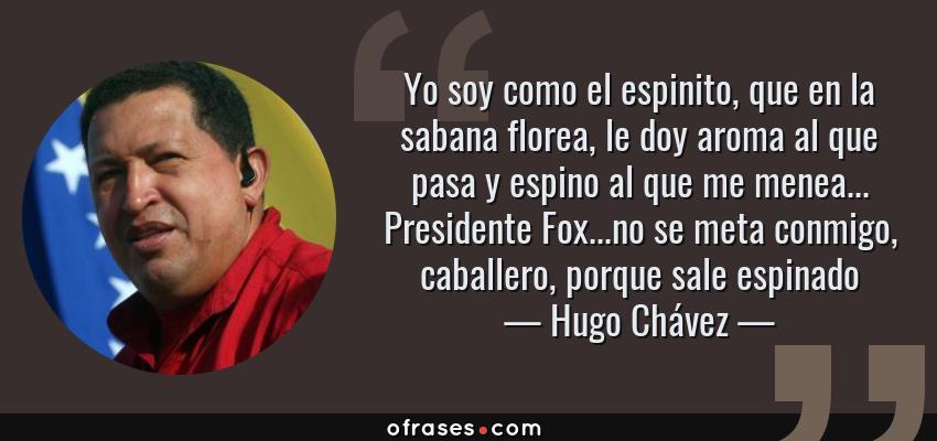 Frases de Hugo Chávez - Yo soy como el espinito, que en la sabana florea, le doy aroma al que pasa y espino al que me menea... Presidente Fox...no se meta conmigo, caballero, porque sale espinado