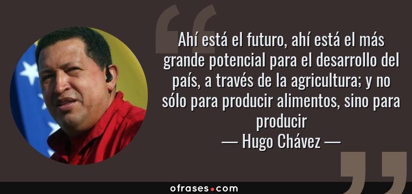Frases de Hugo Chávez - Ahí está el futuro, ahí está el más grande potencial para el desarrollo del país, a través de la agricultura; y no sólo para producir alimentos, sino para producir