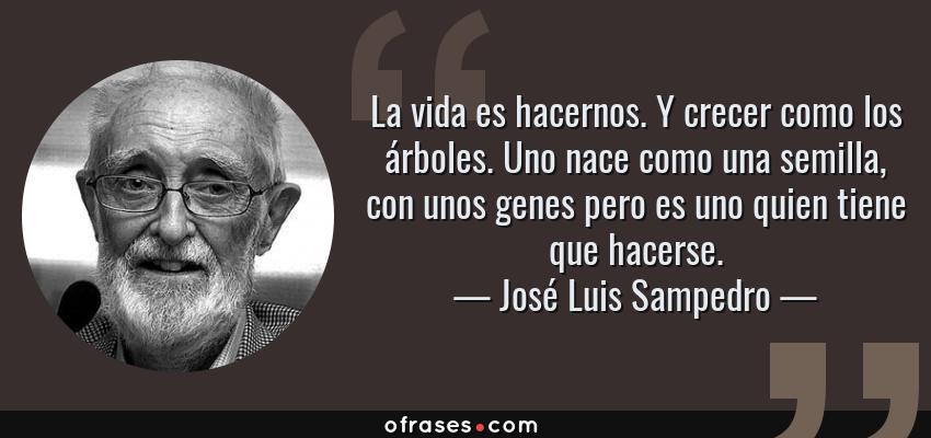 Frases de José Luis Sampedro - La vida es hacernos. Y crecer como los árboles. Uno nace como una semilla, con unos genes pero es uno quien tiene que hacerse.