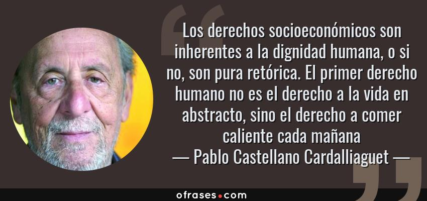 Pablo Castellano Cardalliaguet Los Derechos Socioeconómicos