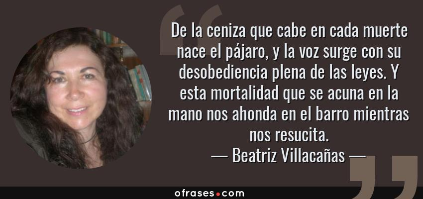 Frases de Beatriz Villacañas - De la ceniza que cabe en cada muerte nace el pájaro, y la voz surge con su desobediencia plena de las leyes. Y esta mortalidad que se acuna en la mano nos ahonda en el barro mientras nos resucita.